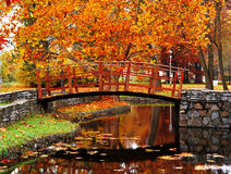Hölzerne Brücke am Park Lizenzfreie Stockbilder