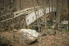 Hölzerne Brücke in spätem Autumn Forest lizenzfreie stockbilder