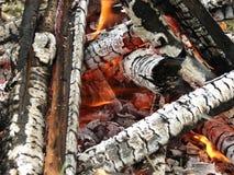 Hölzerne brennende Nahaufnahme des Feuers Stockfoto