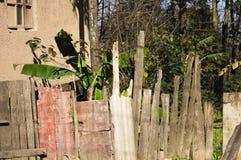 Hölzerne Bretter im Garten Stockfoto