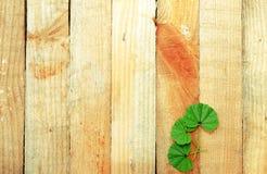 Hölzerne Bretter mit Blättern Stockfotos