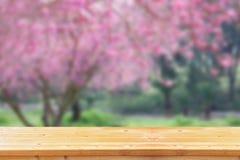 Hölzerne Bretttabelle vor Sommerlandschaft mit Blendenfleck Lizenzfreies Stockfoto