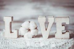 Hölzerne Buchstaben der Liebe Stockfotos