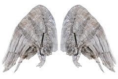 Hölzerne Flügel Stockfoto