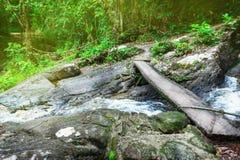 Hölzerne Fußbodenfußbrücke von Planken über kleinem Waldnebenflussstrom im tropischen Waldreflex der Sonnenhintergrundbeleuchtung stockbilder