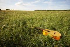 Hölzerne Gitarre, die auf dem grasartigen Gebiet liegt Stockbild