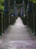 Hölzerne Hängebrücke im Wald ohne Leute Stockbilder