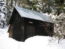 Hölzerne Hütte mit einem Zinndach im Wald lizenzfreie stockfotos