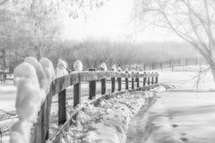 Hölzerne Hecke und Weg in den Schneewehen, schwarz-weiße Fotografie lizenzfreies stockbild