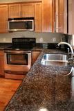 Hölzerne Kabinette der Küche schwarz und nicht rostender Ofen Lizenzfreies Stockfoto