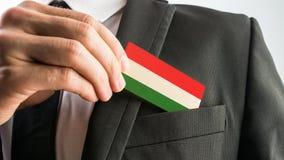 Hölzerne Karte gemalt als die ungarische Flagge Stockbilder