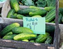Hölzerne Kiste Essiggurken am Landwirtmarkt Stockfotografie