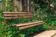 Hölzerne leere Bank in hohem gren das Gras, das im verlassenen Park im Freien ist Stockbild