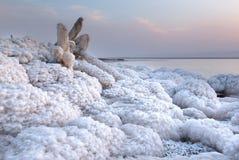 Hölzerne Niederlassung umfasst mit Salz im Toten Meer, Jordanien Stockbilder
