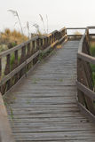 Hölzerne panoramische Brücke über den Sanddünen von Toskana Stockbild