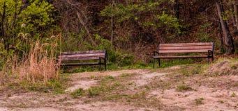 Hölzerne Parkbänke im Waldpark Stockfoto