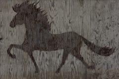 Hölzerne Pferdenbeschaffenheit Stockfotografie