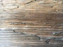 Hölzerne Planke Lizenzfreie Stockbilder