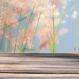 Hölzerne Planke auf Unschärfe bedeckt Blumenhintergrund mit Gras Stockbild