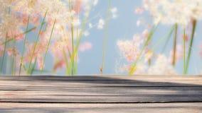 Hölzerne Planke auf Unschärfe bedeckt Blumenhintergrund mit Gras Stockbilder