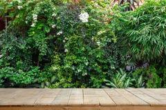 Hölzerne Planken oder Holztisch mit Zierpflanzen oder Efeu- oder Gartenbaum lizenzfreies stockfoto
