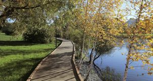 Hölzerne Plattform auf dem Ufer des Teichs stock video footage