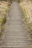 Hölzerne Promenade in einem Nationalpark in England stockfotos