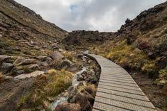 Hölzerne Promenade in Nationalpark Tongariro lizenzfreie stockfotos