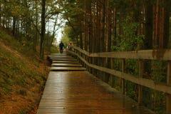 Hölzerne Promenade am regnerischen Tag stockfotografie