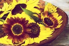 Hölzerne Schüssel mit Sonnenblumen. stockbilder