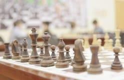 Hölzerne Schachstücke Lizenzfreies Stockbild