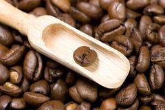 Hölzerne Schaufel mit einer Kaffeebohne Stockfotografie