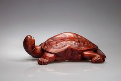 Hölzerne Schildkröte - Indien Stockbilder