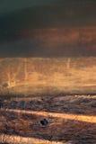Hölzerne Schritte führen in tiefes und kaltes Wasser von einem Teich Sie sind u Lizenzfreies Stockfoto