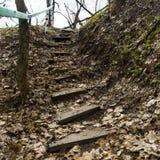 Hölzerne Schritte im Boden und in den Geländern Letztes Jahr ` s gefallene Blätter Treppe im Wald stockbild
