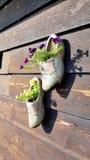 Hölzerne Schuhe in Zaanse Schans, die Niederlande stockfoto