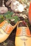 Hölzerne Schuhpflanzer Stockfoto