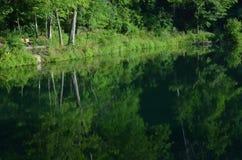 Hölzerne Sitze auf Ufer von Teich in den Sommerbäumen reflektierten sich im Wasser von Teich mit Kräuselungen Stockfotos