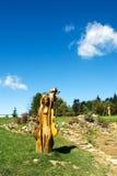 Hölzerne Skulpturen in der Wiese vor Bäumen Lizenzfreie Stockfotografie