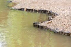 Hölzerne Stummel rudern auf der Flussbank - Dammgrenzfluss stockbilder