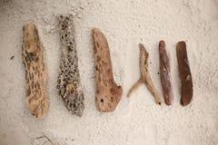 Hölzerne Stumpfsammlung Stockfotos