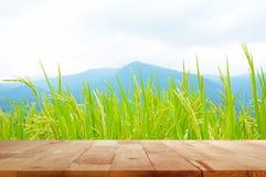 Hölzerne Tischplatte auf Reisfeld und dem Gebirgshintergrund Stockfotos