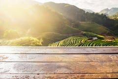 Hölzerne Tischplatte auf Teeplantage Lizenzfreies Stockbild