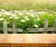 Hölzerne Tischplatte auf weißer Blume mit Zaun im Gartenhintergrund lizenzfreie stockbilder