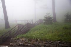 Hölzerne Treppe auf nebeligem Gras bedeckte Hügel Stockfotografie