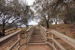 Hölzerne Treppe im Adelaide-Reservewald Lizenzfreies Stockfoto