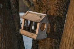 Hölzerne Vogelzufuhr auf einem Baum am sonnigen Tag des Winters Stockfotos