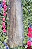 Hölzerne Wand mit Blumen Lizenzfreies Stockbild