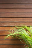 Hölzerne Wand mit Palmblättern Lizenzfreies Stockbild