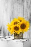 Hölzerne weiße Weinlese der Hintergrundstilllebenblumen-Sonnenblume Lizenzfreie Stockfotografie